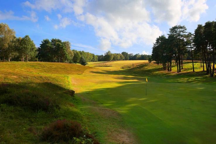 The tree lined fairways of Royal Ashdown Golf Club.