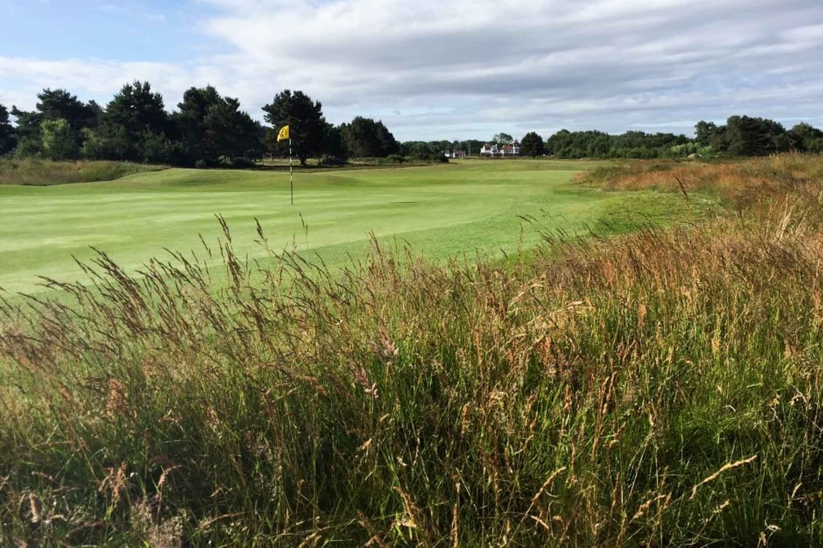 A photo from the rough at Formby Ladies Golf Club.