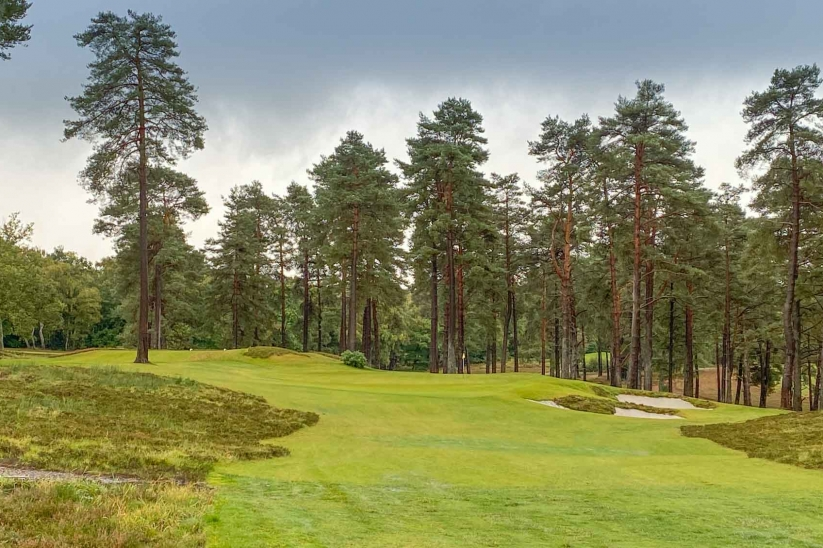 The new 8th hole at Liphook Golf Club.