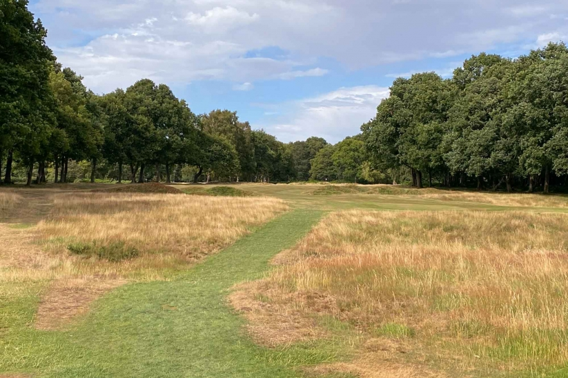 Typical tee shot at the common land golf course at Berkhamsted.