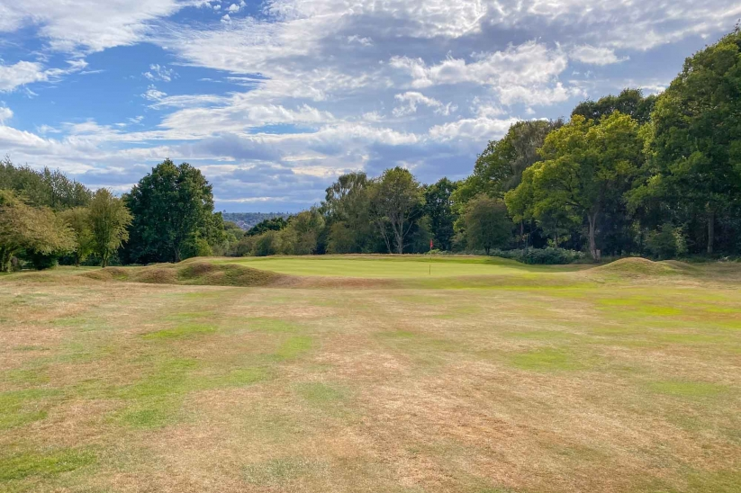 The 17th green at Berkhamsted.