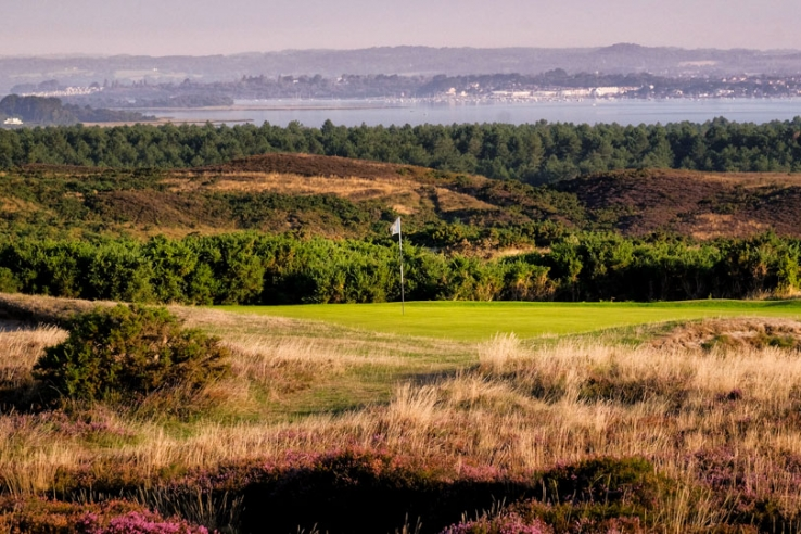 The Isle of Purbeck Golf Club with heather and gorse in bloom.
