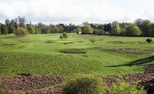 The deer are a common site at Knole Park Golf Club. It is one of the Best Inland Golf Courses Kent.