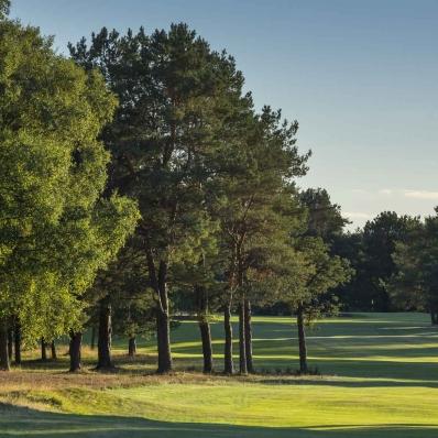 The tree lined fairways at Ladybank Golf Club.