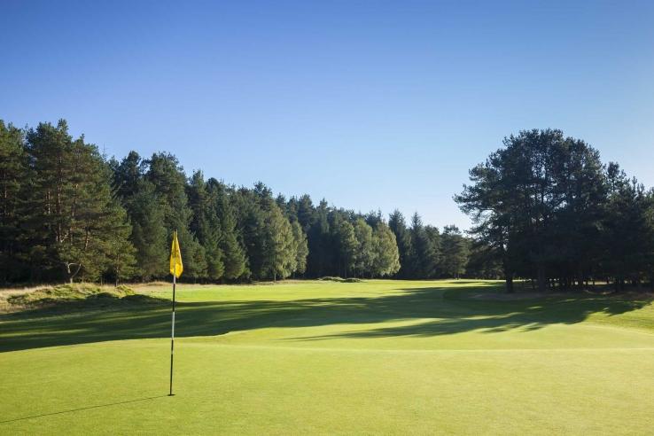 A green at Ladybank Golf Club.