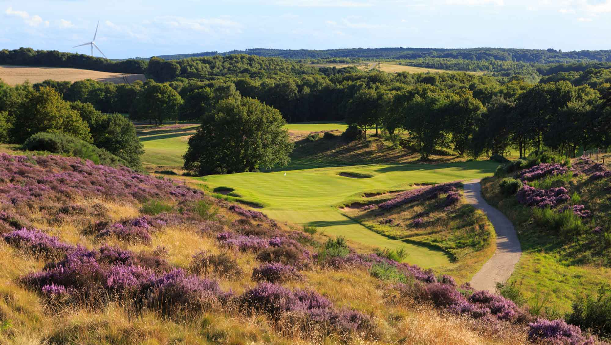 The heather clad 13th hole at Notts Golf Club - Hollinwell.
