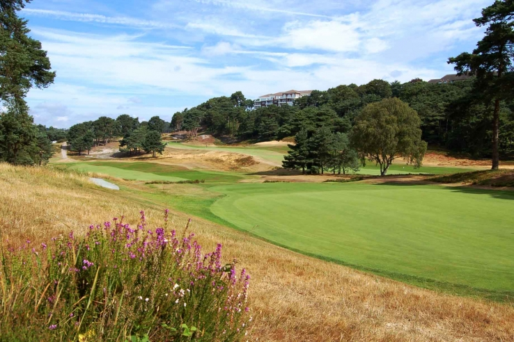 A green at Parkstone Golf Club.