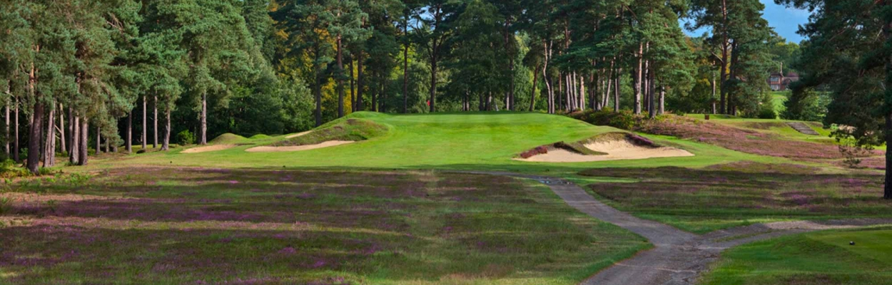 A Harry Colt par 3 at Swinley Forest Golf Club.