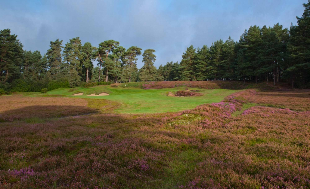 A photo of Hole 4 at Swinley Forest Golf Club.