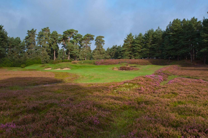 A photo of Hole 4 at SFGC.