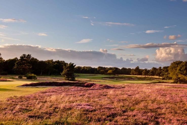 The 14th hole at Walton Heath.