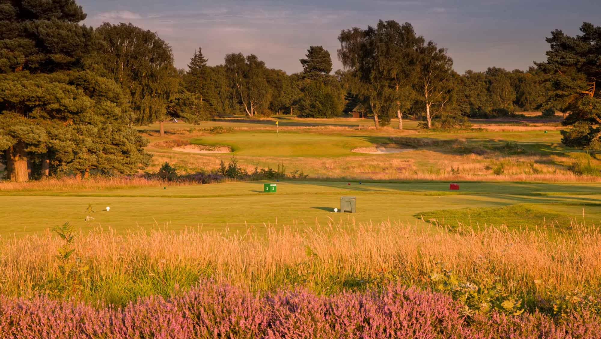 A photo of the 17th hole at Walton Heath Old Course.