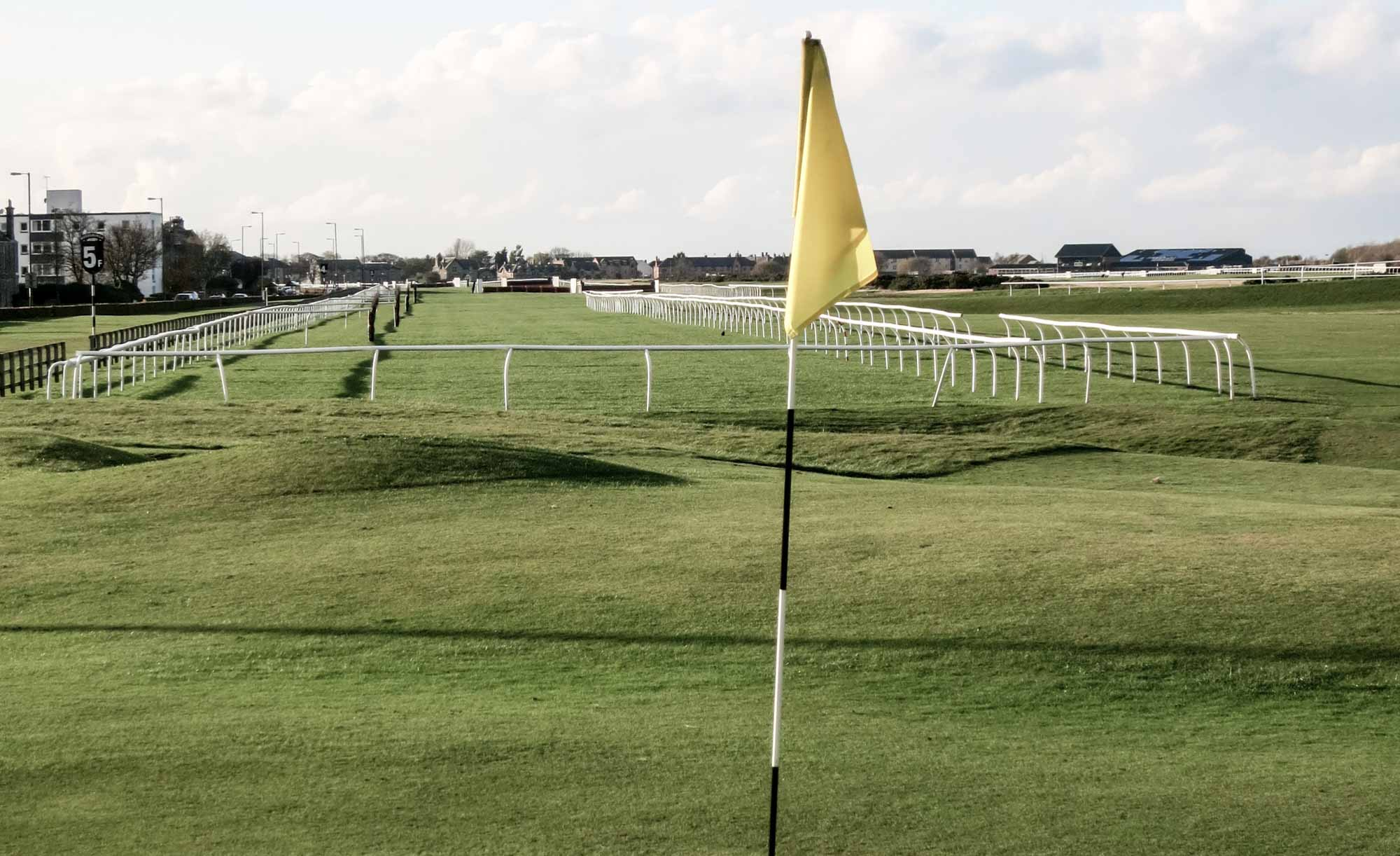 Musselburgh Links with the racecourse in the background.