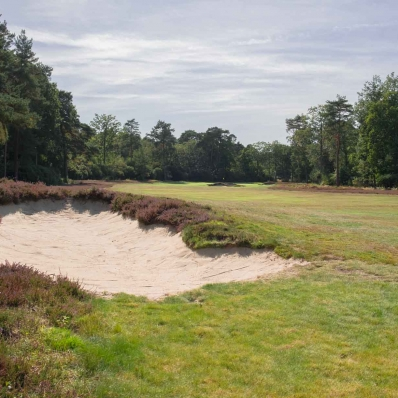 The heathlands are returning at New Zealand Golf Club.