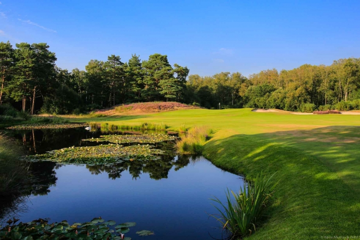 A photo of the par 4 14th at West Sussex Golf Club. A heathland golf course type.