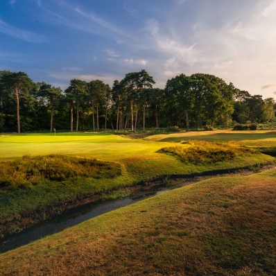 A photo showing the dyke on the 6th hole at Woking Golf Club.