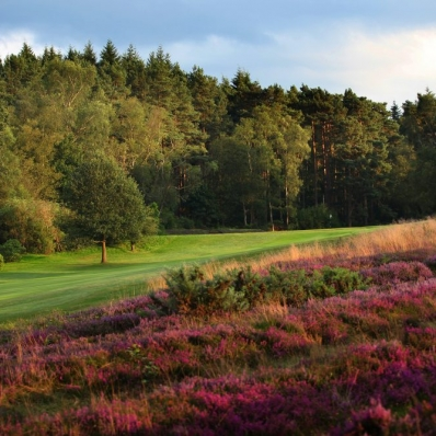 The 2nd hole with green in the distance at Liphook Golf Club.