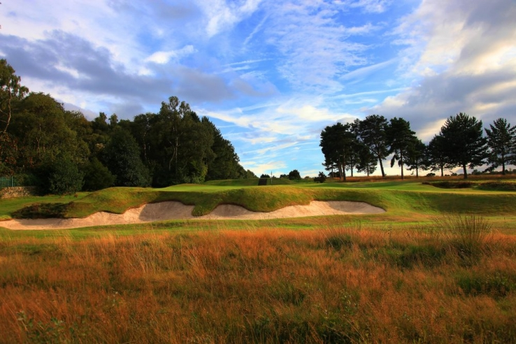 The heather clad bunkers of Alister MacKenzie at Moortown Golf Club.