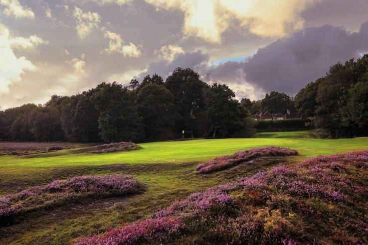 The 15th hole and green at Piltdown Golf Club.