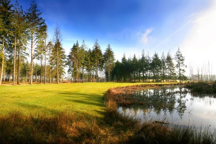 The 11th hole at Remedy Oak Golf Club.