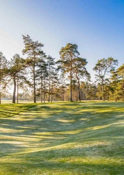 The world class 5th at Royal Worlington Golf Club.