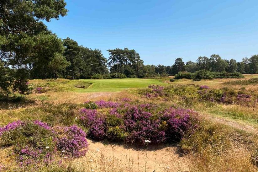 Heather Bunkers Heathland Golf Woodhall Spa Golf Club Tom Doak