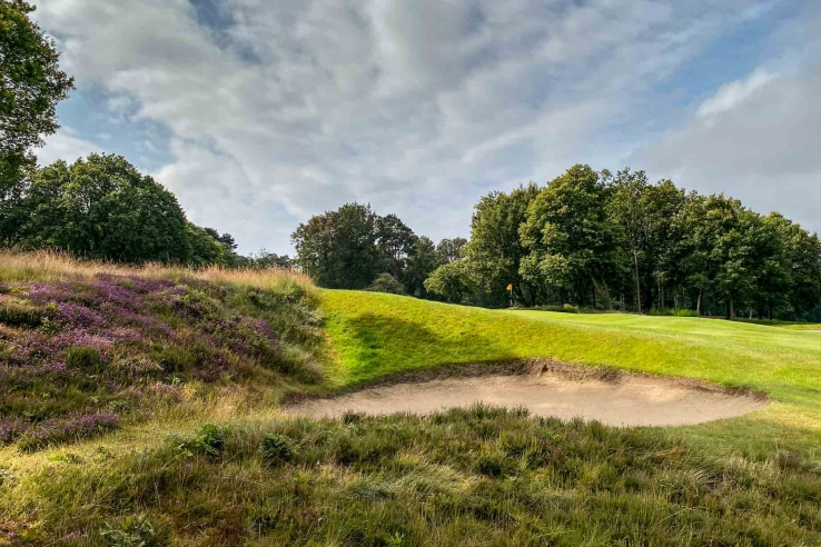 Heather Bunker 15th Hole Harry Colt