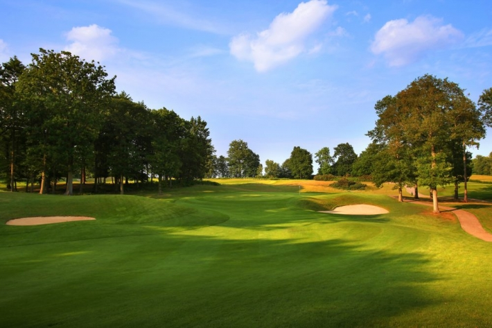 A photo of the enchanting pine forests at Woburn Golf Club.