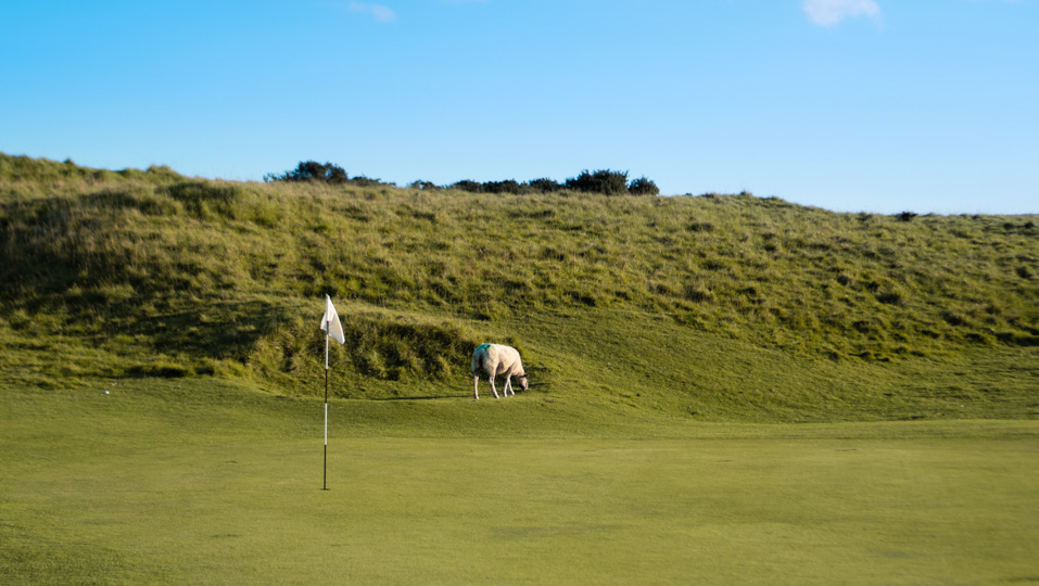 The greenkeepers Cleeve Hill Golf Club.