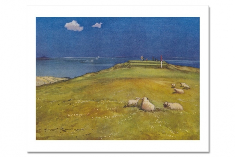 Harry Rountree Gullane Sheep