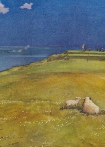 Harry Rountree Gullane Sheep